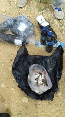 Diduga Akibat Pencemaran Limbah PKS, Ikan Mati di Sungai Amuik Singingi Hilir