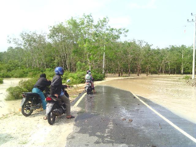 Selain Pemukiman dan Ruas Jalan, Banjir Juga Genangi Areal Persawahan Warga