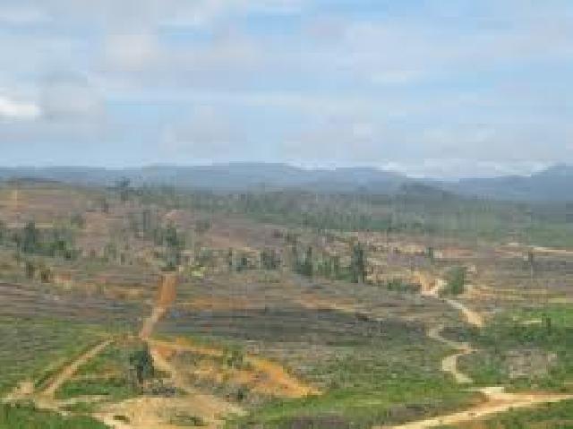 FPMA laporkan 3 Terduga Perusak Hutan Ulayat Hulu Kuantan