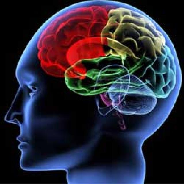 Studi: Keuangan Menipis, Tingkat IQ Melorot