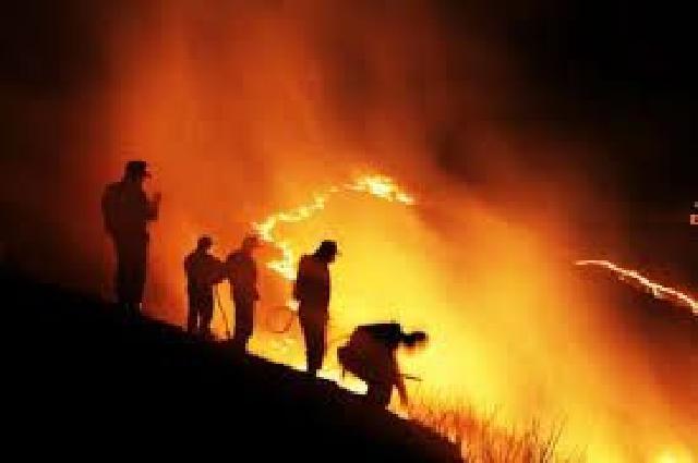 Titik Kebakaran Lahan Kembali 'Bertamu' di Riau