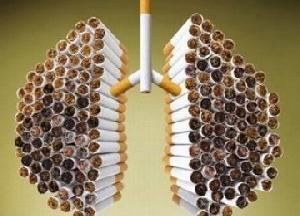 Konferensi Rokok Diadakan, Inilah Reaksi Masyarakat