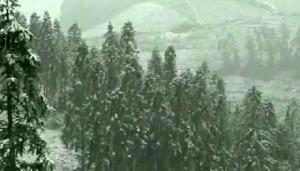 Fenomena Baru, Vietnam Diselimuti Salju