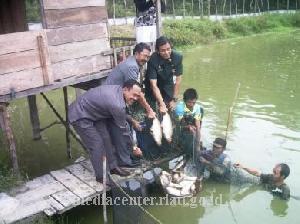 Dalam Setahun, Produksi Ikan di Kuansing Meningkat 400 Ton