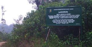 Hutan Lindung Bukit Batabuh Masuk Kawasan Strategis Nasional