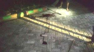 Tewas Ditikam Perampok, Pelayat Padati Rumah Penjaga Sekolah SDN 025 Teluk Kuantan
