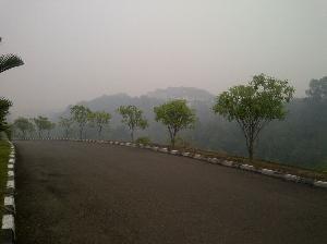 Kabut Asap Semakin Tebal di Kuansing, Jarak Pandang Sempat 300 Meter