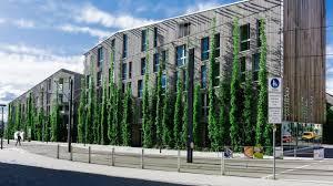 Wujudkan Green City, Pemilik Bangunan Harus Diingatkan Komitmen Tanam Pohon