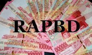 Plt. Kepala Bappeda Litbang :  Draft Revisi KUA PPAS Segera Dikembalikan ke DPRD