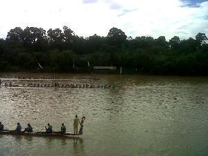 Jalur Lintah Jalang Jawara Pacu Jalur Kecamatan Rayon II
